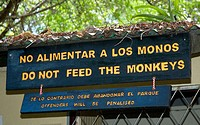 monkey sign, Costa Rica