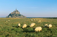 Mont Saint Michel. Manche, Normandie, France