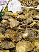 Oysters. La Boquería market. Barcelona. Spain.