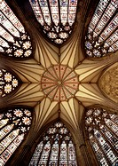 York, Kathedrale/Gewölbe im Kapitelhaus