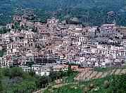 Castiglione, Ortsbild