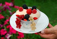 icecream, wild fruits