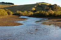 Low tide at Matapouri estuary, Northland, New Zealand