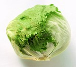 A Head of Iceberg Lettuce (thumbnail)