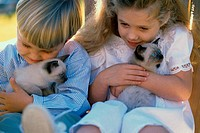 Close-up of a boy and a girl sitting with Siamese kittens
