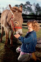 Side profile of a girl feeding a donkey