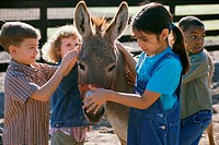 Group of children standing with a donkey
