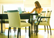 Female telecommuter working at table