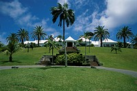 Palm Grove Bermuda