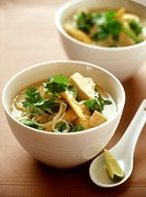 Noodle soup with tofu