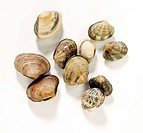Several clams