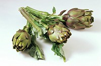 Three Artichokes