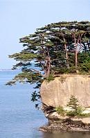Matsushima-wan landscape, Matsushima. Northern Honshu, Japan