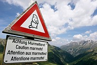 Trafic Sign about marmots, National Park Hohe Tauern, Austria