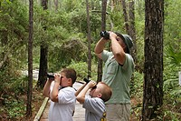 Birder, nature boardwalk, father, sons, binoculars. Audubon Bird Sanctuary, Dauphin Island, Alabama. USA.