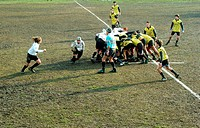 boys, rugby