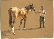 Bathing Race Horse2003Chloe Henderson (b.1975/Argentinean)Pastel on paper