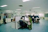 People working in an office in INDIA