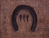 A horseshoe and three nails