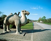 10654937, avenue of animals, beasts, Beijing, China, Asia, Ming graves, Peking, Beijing, sculptures, way,