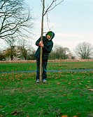 Man holding tree trunk in park