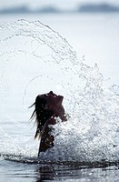 10102971, dynamic, water splash, woman, bathing, water, holidays, vacation, back light, sea