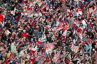 10257843, bright, colours, flags, fans, football, soccer, sport, football fans, mass, crowd, stand, spectator,