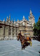 La Giralda  Plaza del Triunfo Seville Spain