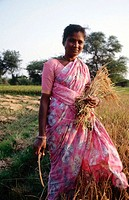 Harijan woman farmer holding harvested rice from her field. Nadubadum village, nearTiruthani. India.
