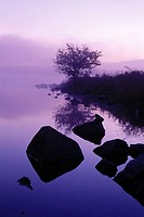 Lake and mist with rocks and magenta colors, USA