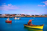 Fishing Boats, Harbour , Western Cape, South Africa