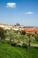 Prague - Petrin