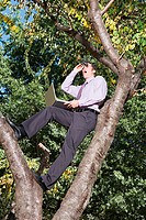 Office worker spying in a tree