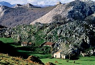 At the National Park of Covadonga, in the Picos de Europa mountains range. Asturias. Spain.