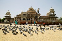 People feeding pigeons outside a museum, Government Central Museum, Jaipur, Rajasthan, India