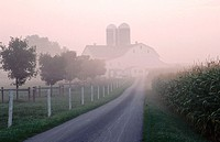 Farm, in USA, horizontal, w building and home with the morning mist