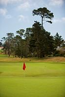 Golf flag in a golf course