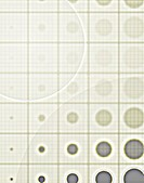 Circles in a Grid