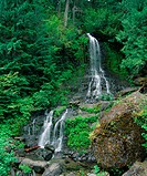 Waterfall cascading down hill in forest