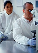 Chemists Working Together in a Laboratory