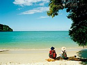 New Zealand, South Island, two women on log on beach, rear view