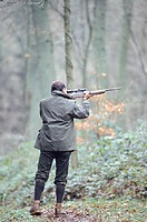 Man aiming rifle in woods, rear view