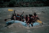 rafting, colorado river, utah, usa