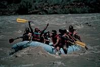 rafting, colorado river, utah, usa