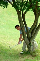 Man playing a golf shot from behind a tree