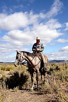 Cattleman with ´Quarter horse´ and/or ´Paint´ of USA. Ponderosa Ranch. Seneca. Oregon . USA
