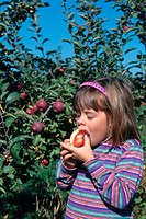 Girl eating an apple in an apple orchard.