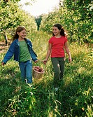 Two girls carrying a basket of apples (thumbnail)