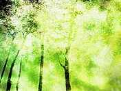 Abstract image of park in summer