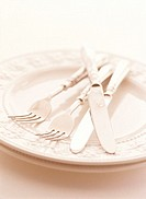 Close Up of Knives and Forks on a Plate